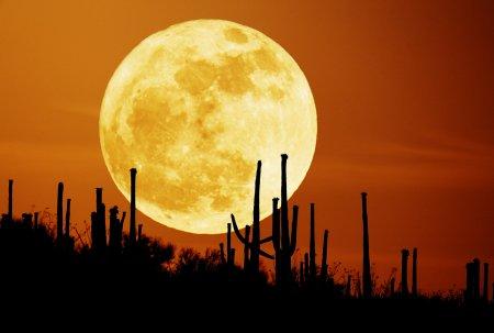 Суварова Луна